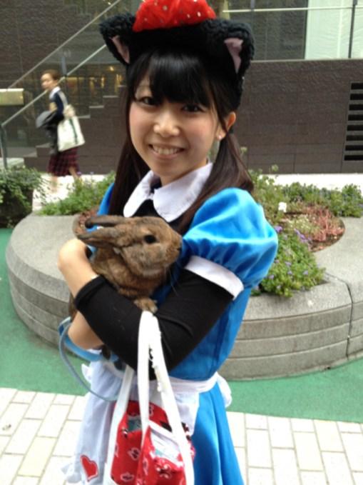 Sì, girava con un coniglio in braccio... e le nekomimi (orecchie da gatto). Non vi pare una contraddizione?