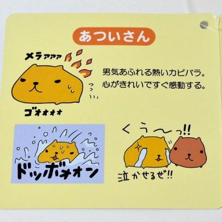 kapibara-san capibara nakama (4)