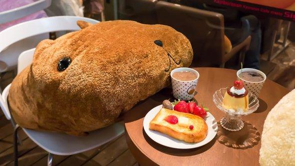 Kapibara-san no mise (3)