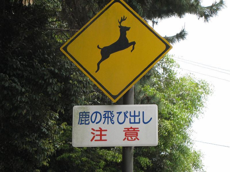 鹿の飛び出し 注意 shika no tobidashi chuui, Attenti ai cervi che potrebbero attraversare all'improvviso!