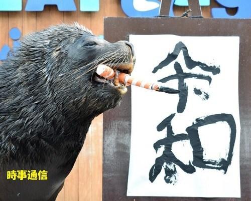 La febbre del sabato Reiwa animali (9)
