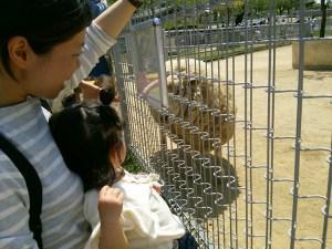 姪っ子と動物園へ