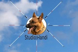Studio Handi logo