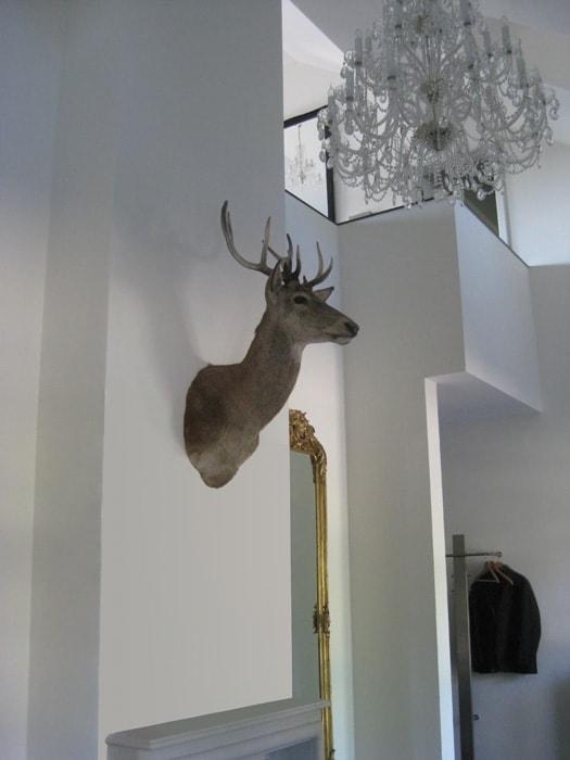 Hert aan de muur