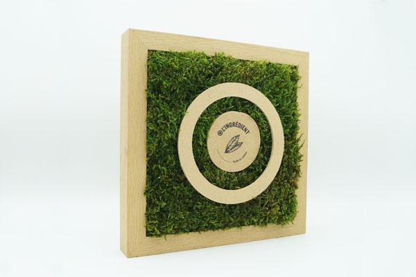 photo d'un cadre en chêne avec de la mousse végétal, pièce rapportée en bois collée à la mousse support
