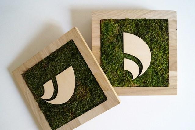 Dytique-tableaux_végétaux_mousse_stabilisé_solution_ecologique_cadre_bois_logo_milieu