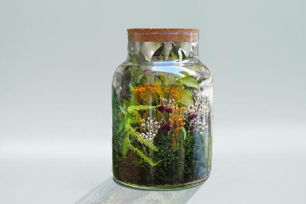 Trophée sur mesure, terrarium, bocal avec végétation et bouchon en liège, tropical, colorée, studio l'ingrédient
