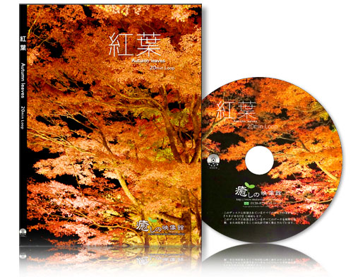 Autumn_leaves_dvd