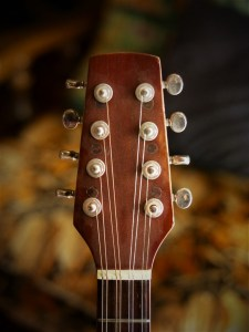 studio-la-boite-a-meuh-guitare-bouzouki-tete-devant