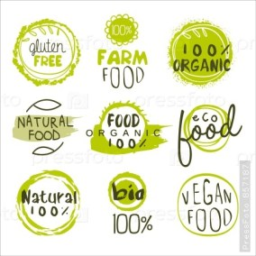 how-to-illustrate-healthy-food - 45