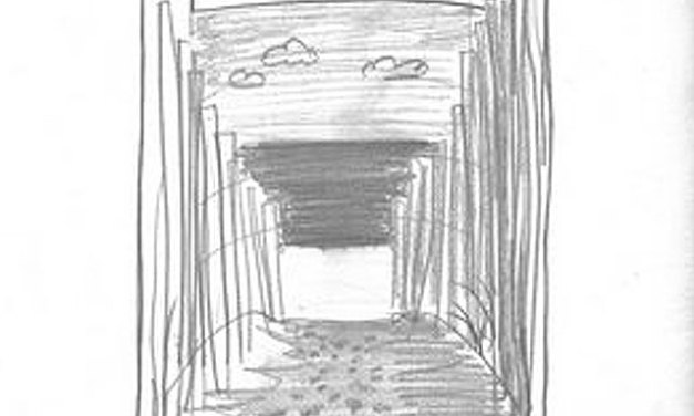 New Seascape Sketch from P.J Cook!