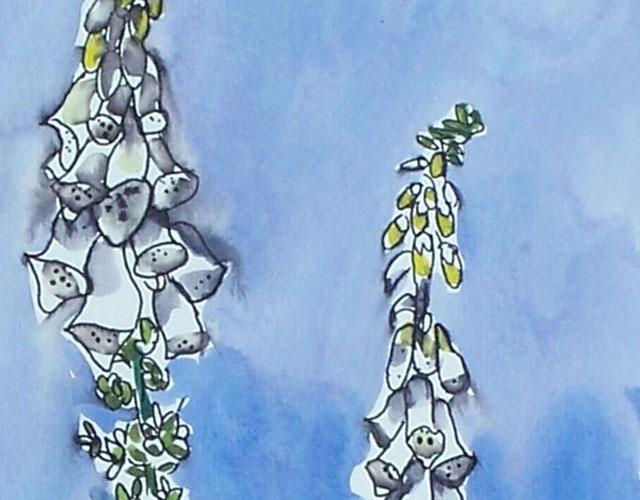 Sketching Flowers Outdoors
