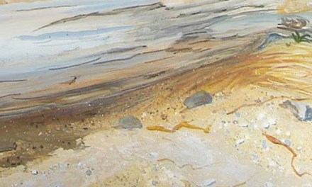 Painting Textures In Acrylic Paint Demonstrated In this Maine Shore Painting