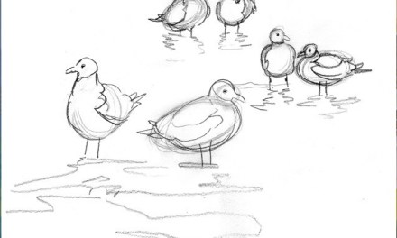 Sketch For The Laughing Gulls Seascape Painting
