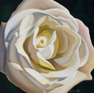oil painting of a closeup of white rose