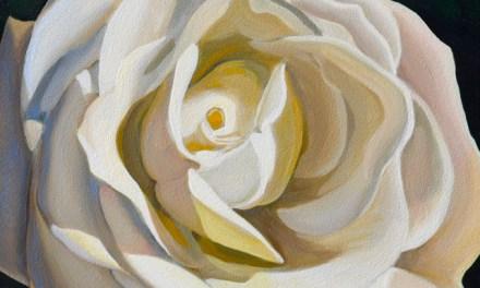 Mini White Rose Oil Painting
