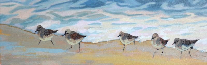 update on sandpiper birds oil painting