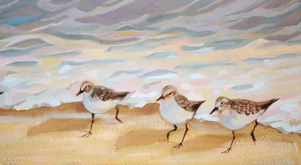Sandpiper Birds Oil Painting 3rd Update
