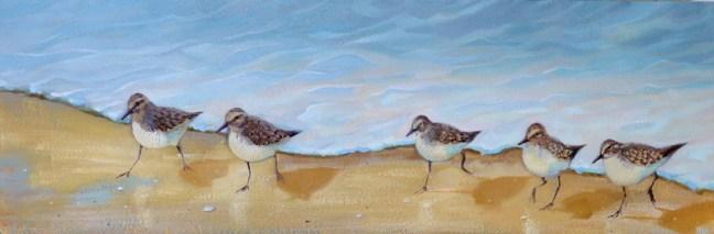 sandpiper birds running on the beach oil painting