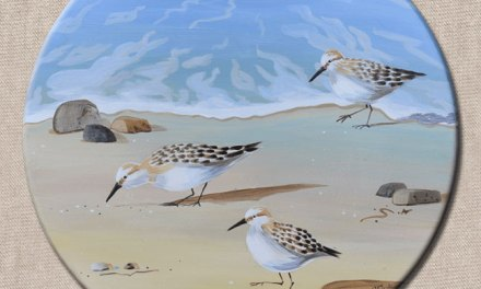 New Sandpiper Bird Painting!