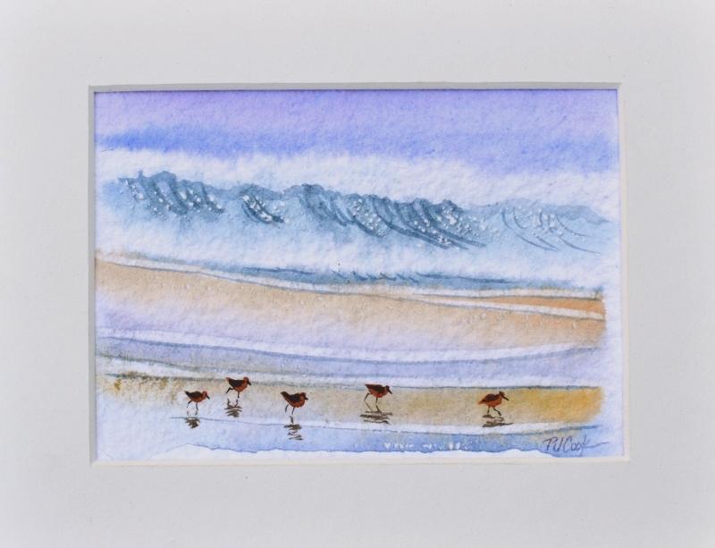 Sandpiper Birds Watercolor Painting