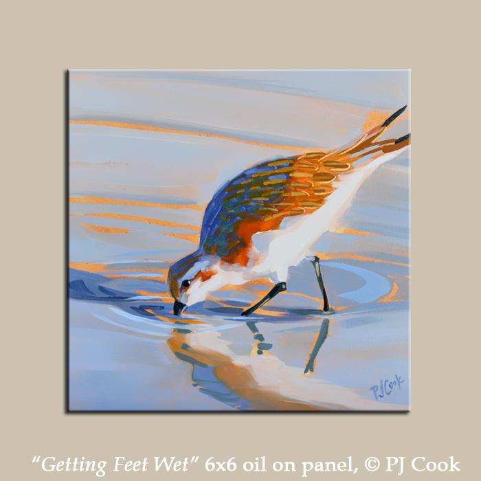 wading shorebird walking in the water, sandpiper bird, 6x6 oil painting.