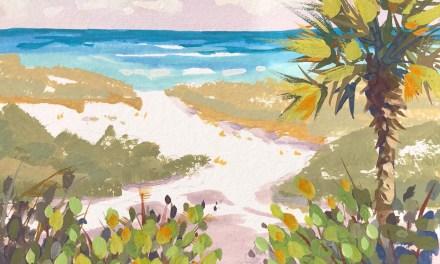 Ocean Beach Path Auction Ending Soon!