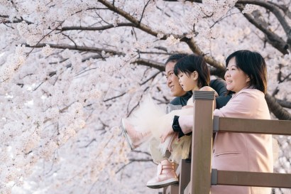 Busan Gamcheon Village Cherry Blossom Family Photographer-17