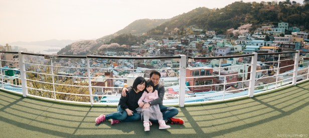 Busan Gamcheon Village Cherry Blossom Family Photographer-2