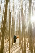 Seoul Forest Han River Engagement Photographer-4
