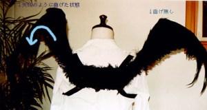 wing009_b