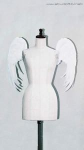 wing044-f