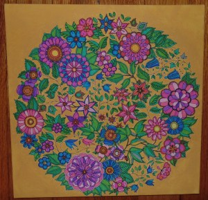 completed coloring canvas Johana Basford