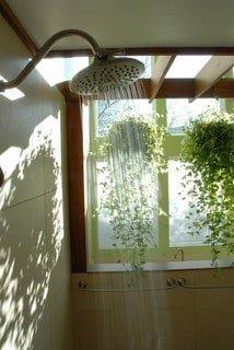 green exotic bathroom luxury shower head
