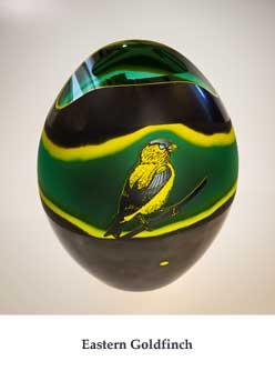 Eastern-Goldfinch