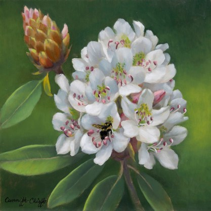 """Rhododendrons, oil on copper, 8"""" x 8"""""""