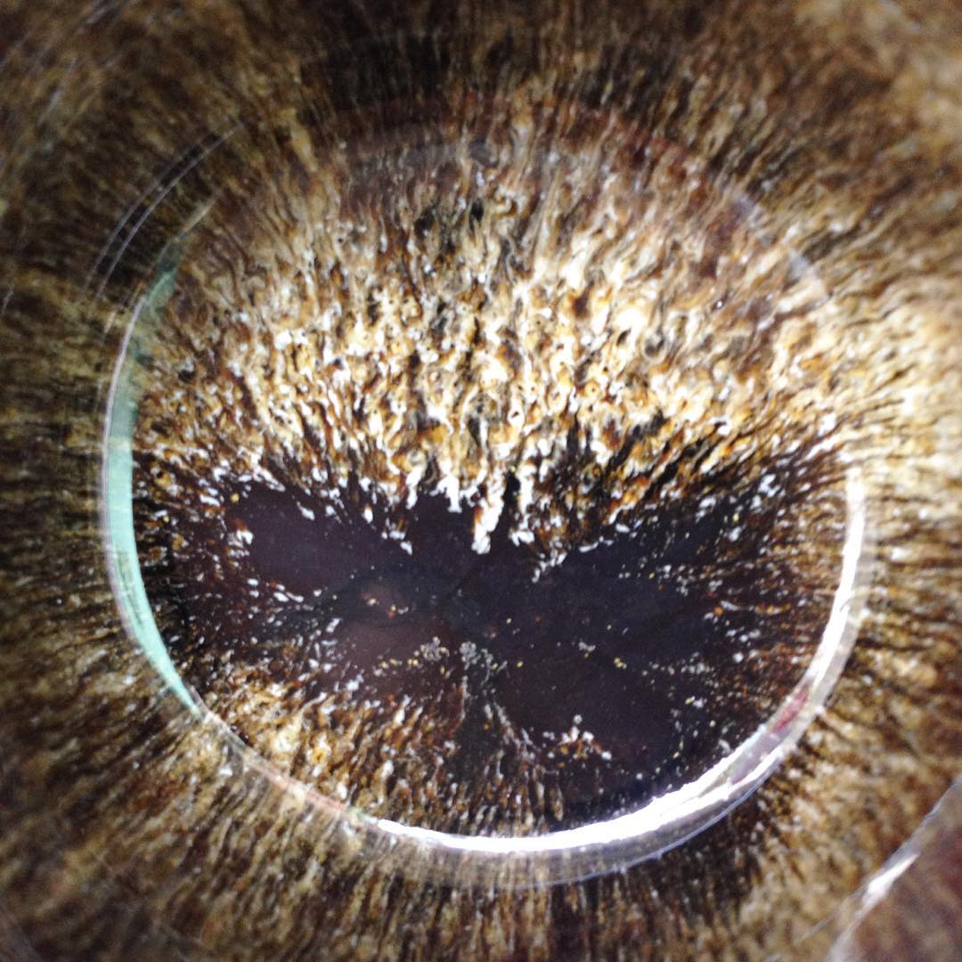 The beauty of experimentation lies in the fact that there are risks of failure, but at the same time, also possibilities for unexpected discoveries.  We discovered this beautiful pattern, which looks like the iris of the eye of a majestic animal, and we also found a cup stuck onto our kiln shelf as the glaze was too flowy. Such is life! Time and chance happens to all man, or kiln shelves for that matter :p . . #experimentation #discovery #handmade #pottery #clay #ceramic #glazes #colours #harefur #madeinsg #studioasobi #singapore #art