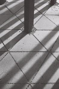 Photowalk-D3200-3