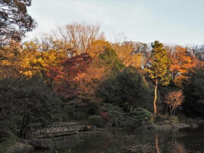 Le Arisugawa-no-miya Memorial Park