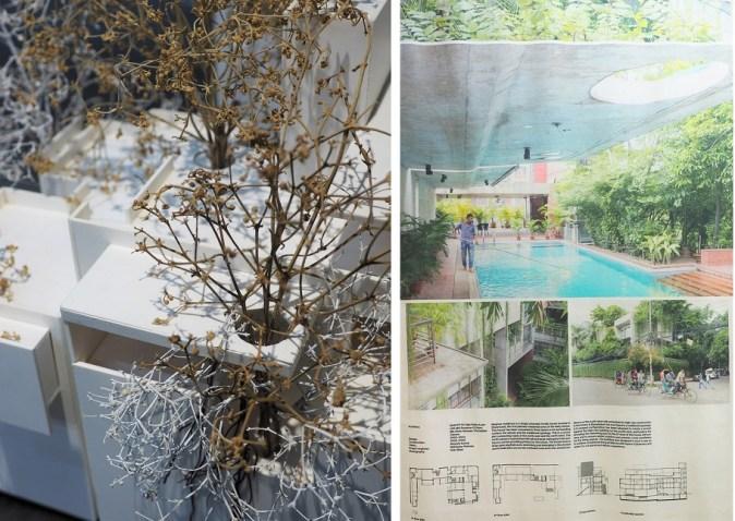 Résidence Meghna Dhanmondi et sa végétation
