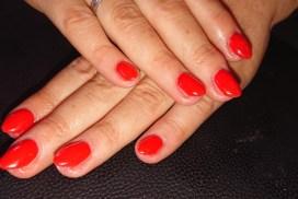 Prachtig rood