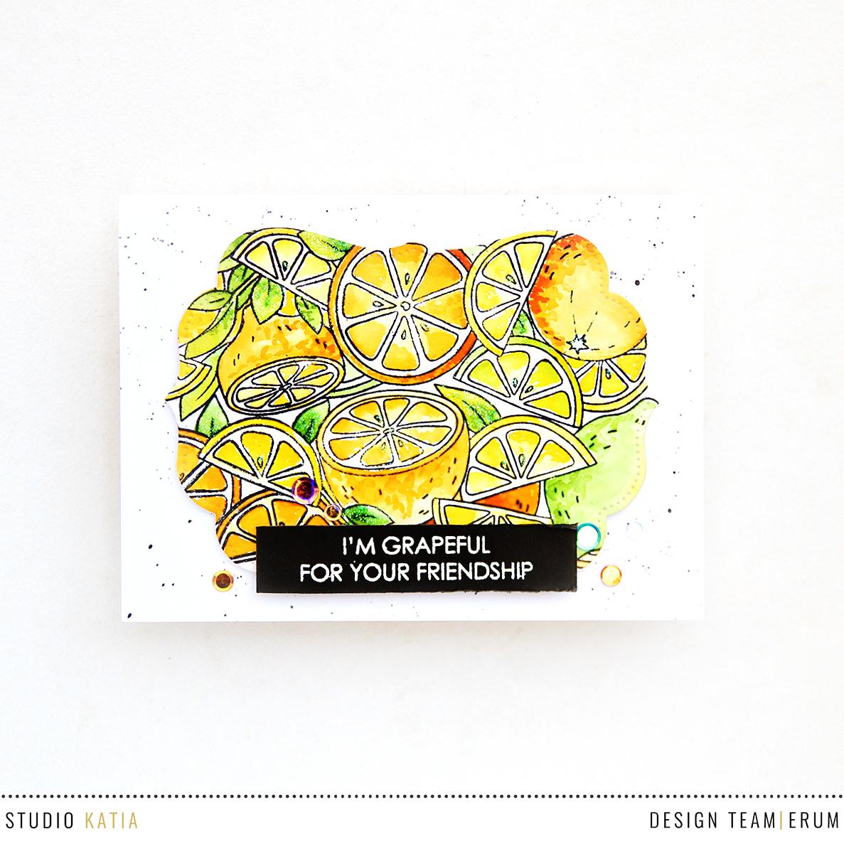 Studio Katia Citrus Trimmings Stamp Set | Erum Tasneem | @pr0digy0