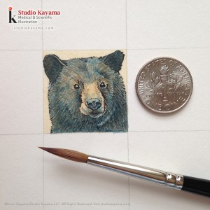 black bear watercolor by Ikumi Kayama