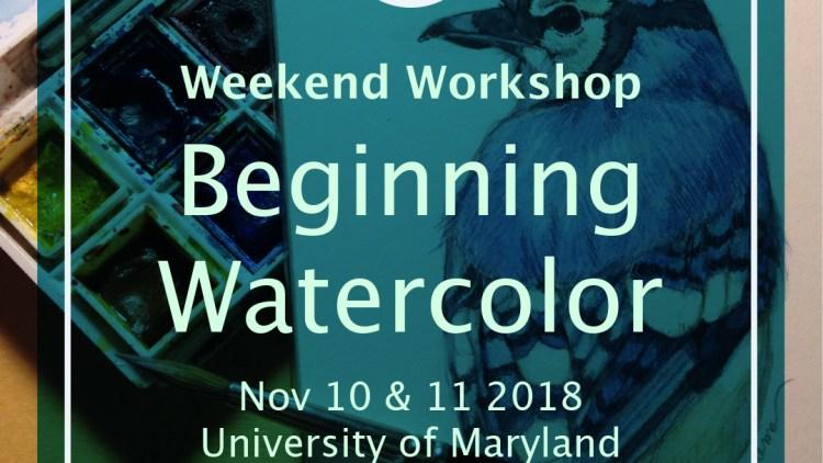 watercolor illustration workshop by Ikumi Kayama at University of Maryland