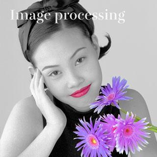 画像処理作例の紹介