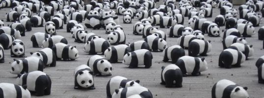 How to Beat Google's Panda Using the Dig Dog Technique