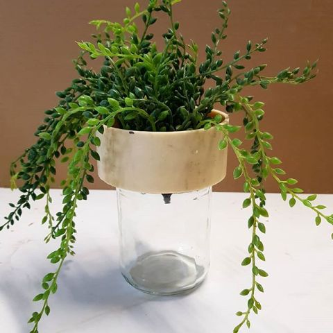 How about some re-use? A flowerpot that uses an empty glass jar as water reservoir. Any toughts?