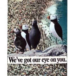 We've Got Our Eye on You – Giclee Print. Limited Edition.
