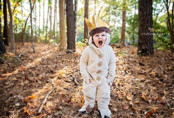 max_where-the-wild-things-are_2nd-birthday-photos-obx