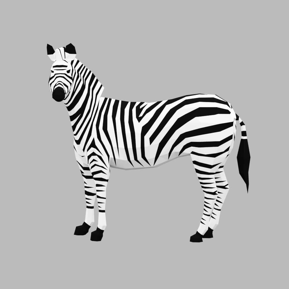 StudioOchi_Zebras_Preview01